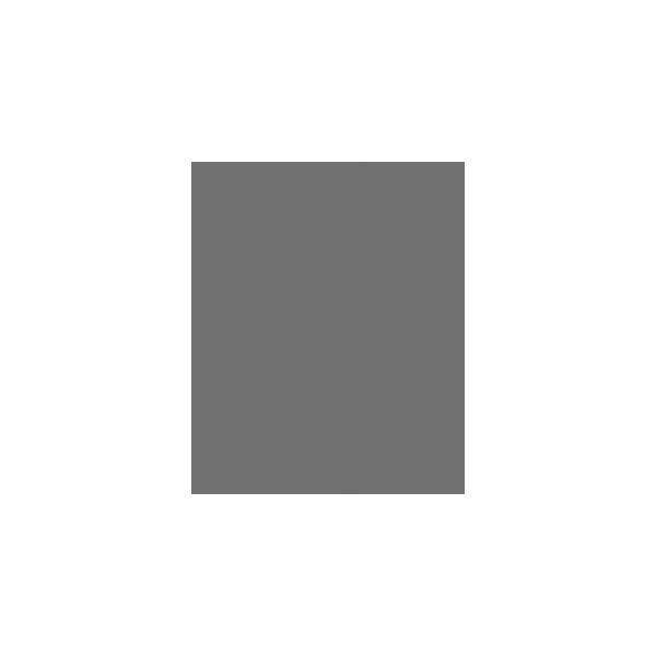 Playology_LOGO