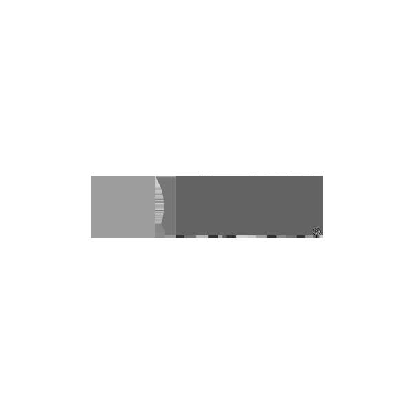 QRAY_LOGO2